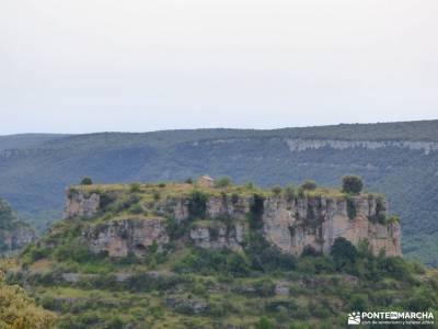 Sedano,Loras-Cañones Ebro,Rudrón;valle de jerte cerezos en flor el bosque de irati rutas culturale